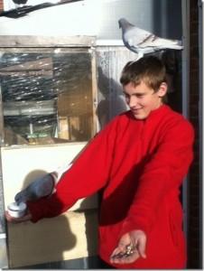 Paul Askew's son enjoying their pigeons