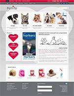website-screen-cp